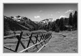 Tahoe-4648-Edit-Edit.jpg