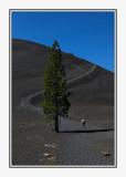 LassenVolcanic-5314-Edit.jpg