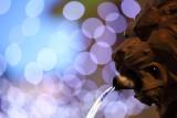 Chamonix Lion