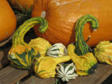 Nov 2011: Pumpkin BOF