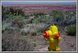 Arizona and New Mexico 2012