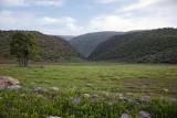 The Way to Bisheh Waterfall