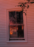 goodbye-house-5-small.jpg