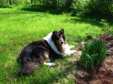 RH-sabrina-23-05-2011.jpg