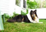 RH-sabrina-29-05-2011.jpg