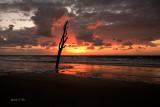 Red Sky Morning-2