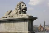 Chain Bridge, the lion without tongue