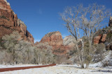 Near the Weeping Rock area