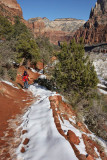 Emerald Pools Trails