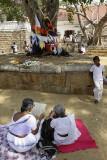 Anuradhapura, Sri Maha Bodhi