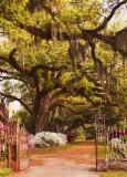 2103 Oaks of Grace