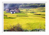 Yongding Country Scene 2
