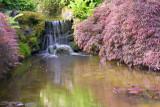 Japanese Garden-Butchart Gardens