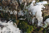 Week 7 Waterfall DSC_46028.jpg