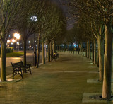 Week 10 Salford_nights_20120226_0270_nr_ed3.jpg