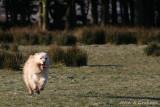 Love to see him run