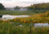 A Northwoods Wetland 0041