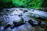 7 Mile Creek 3