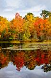 Perch Lake WI , reflections