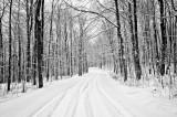 Winter 11/12