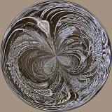 Ice Flower 1.jpg