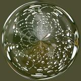 Spiderweb 1.jpg