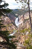 Yellowstone River Canyon WY