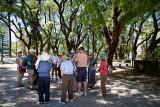 Walking Tour near the Emperador Hotel