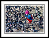couldnt resist a shot of this cute little girl feeding the pigeons...