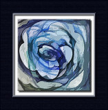 colarity embossed rose