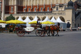 Horse Drawn Carriage at Main Square