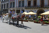 Horse Drawn Carriage - Cracow Old Town