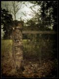 DSCF0003-fence-post.jpg