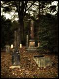DSCF0010-BG-cemetery.jpg