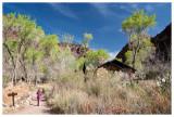 Norah nearing Phantom Ranch