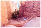 A look down at the Navajo Trail