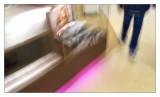 20120225apana__016.jpg