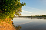 Sunny River