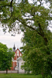 Old Church, Old Tree
