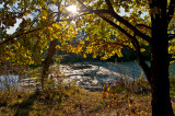 Autumn Of Life Should Be Sunny