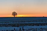 Blue Snow At Sunset