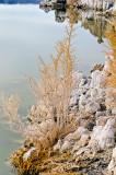 Mono Lake, South Beach