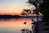 Vistula River At Sunset
