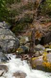 Chilnualna Creek