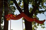 Red Lantern Dragon