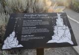 Petrified Springs_Mono Lake.jpg