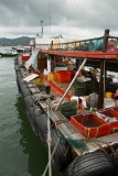 fishing boat market