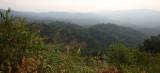 KAENG KRACHAN NP THAILAND - FOREST SCENES (21).JPG