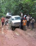 DZANGA NDOKI NATIONAL PARK  - CENTRAL AFRICAN REPUBLIC (15).JPG