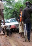 DZANGA NDOKI NATIONAL PARK  - CENTRAL AFRICAN REPUBLIC (17).JPG